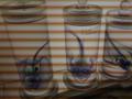 透明標本(横の帯は撮影環境によるものです)