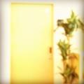 [instagram]http://instagr.am/p/SEoJFZi-9U/
