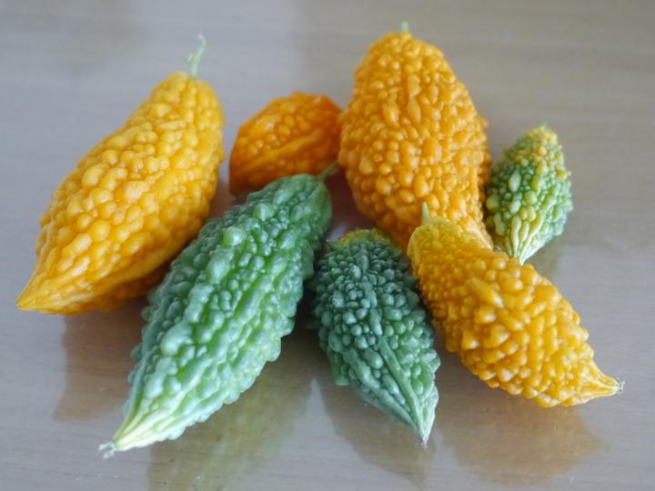 2013/8/13ゴーヤー収穫