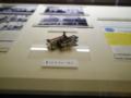 カシオ計算機のリレー式計算機「14-A」に使われている自社開発のリレ