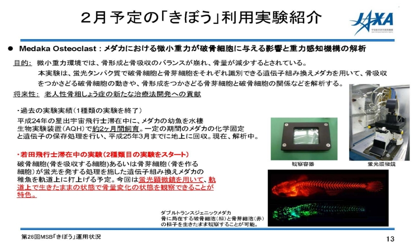 f:id:Imamura:20140213153718j:plain