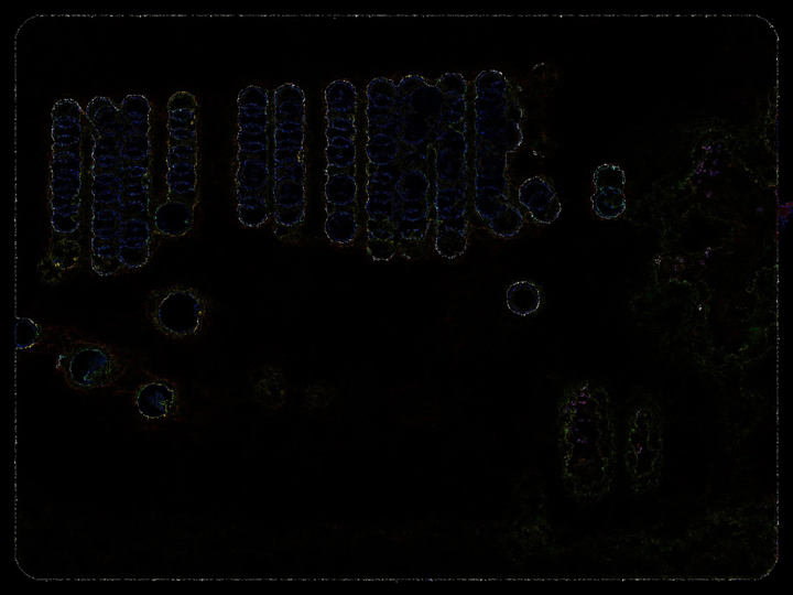f:id:Imamura:20140412022405j:plain