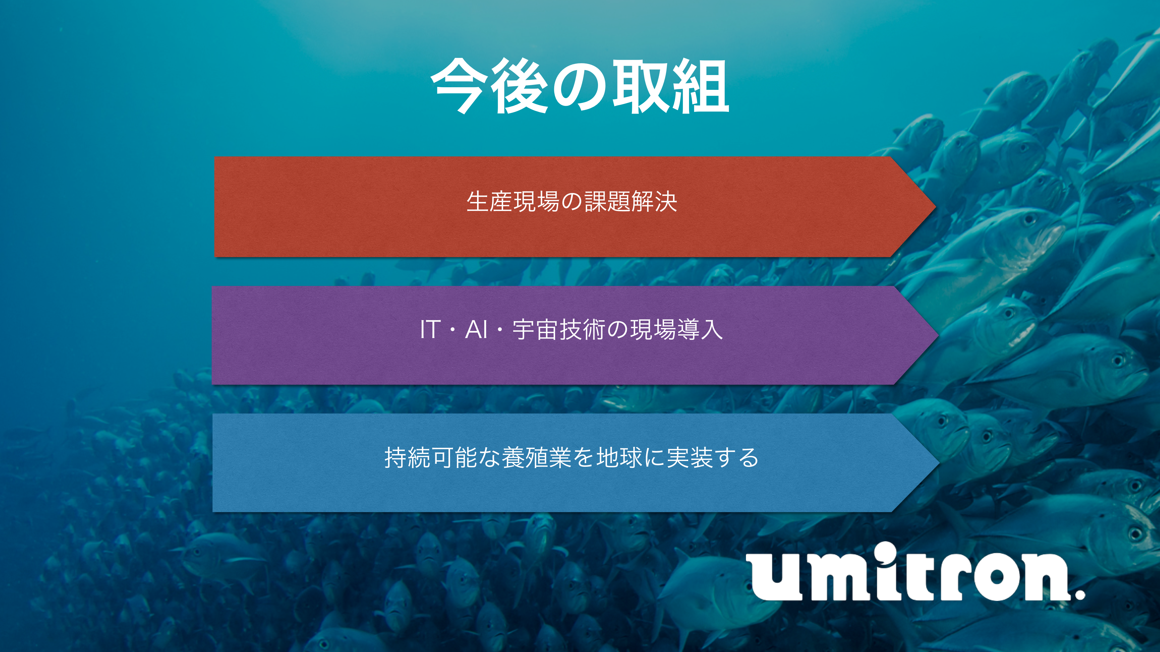 f:id:Imamura:20181220152528p:plain