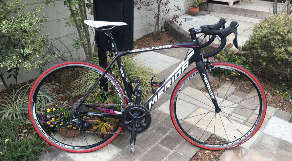 f:id:IndoorCyclist:20180531231007p:plain