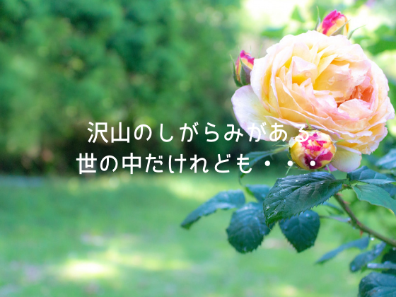 f:id:InoueTatsuya:20190706110932p:plain