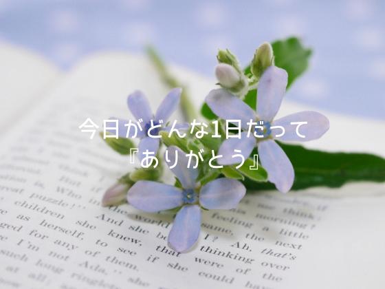 f:id:InoueTatsuya:20190716093503p:plain
