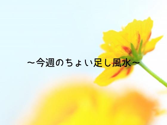 f:id:InoueTatsuya:20190818075704p:plain