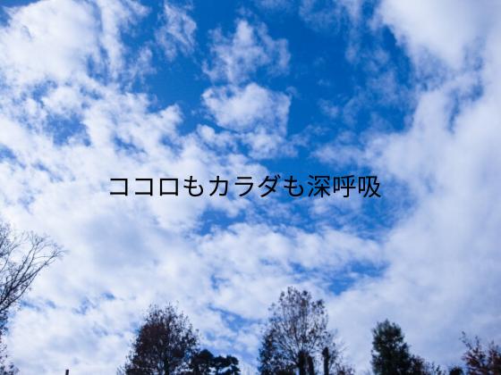 f:id:InoueTatsuya:20200113103808p:plain
