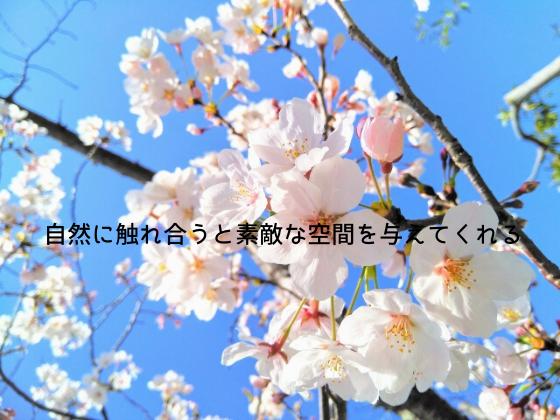 f:id:InoueTatsuya:20200330005655p:plain