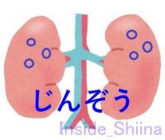 両側腎嚢胞