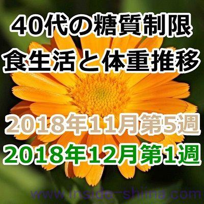 40代の糖質制限2018年11月第5週と12月第1週