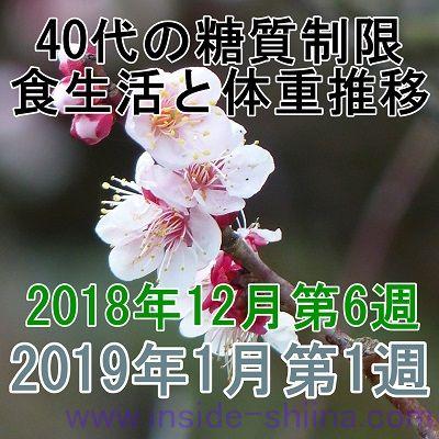 40代の糖質制限2018年12月第6週と2019年1月第1週