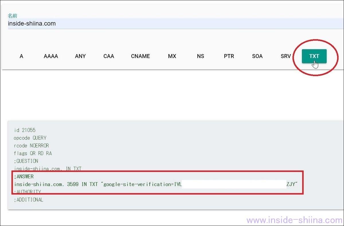 DNS TXT レコード反映確認方法