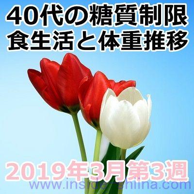 40代の糖質制限2019年3月第3週