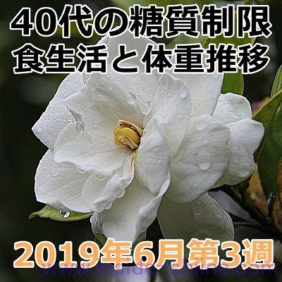 40代の糖質制限2019年6月第3週