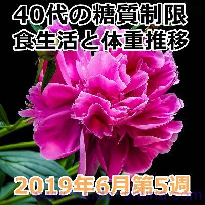40代の糖質制限2019年6月第5週