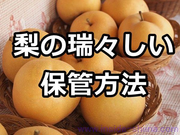 梨 保存方法 常温