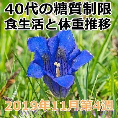 40代の糖質制限2019年11月第4週