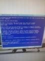 VMでもブルースクリーンなXP