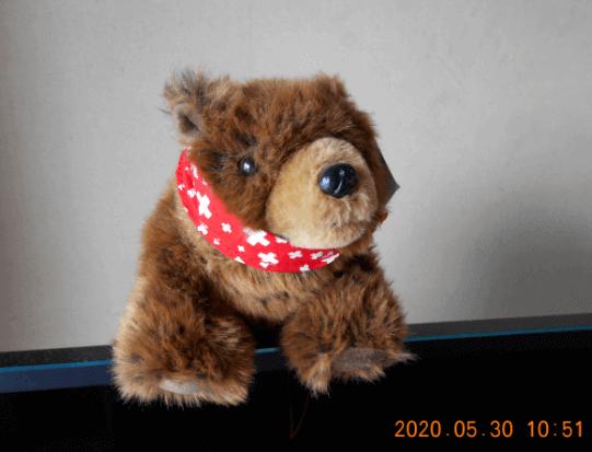 f:id:Ippo-san:20200530105520p:plain
