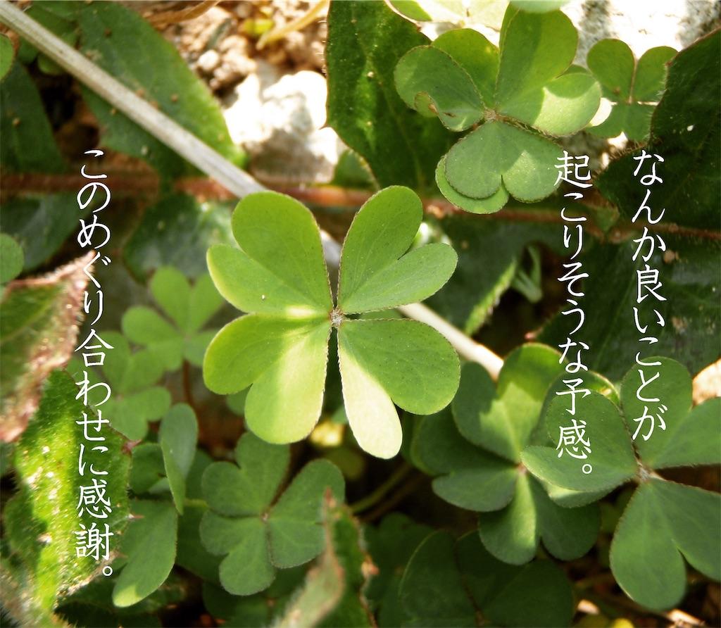 f:id:Iyokan:20201026190142j:image