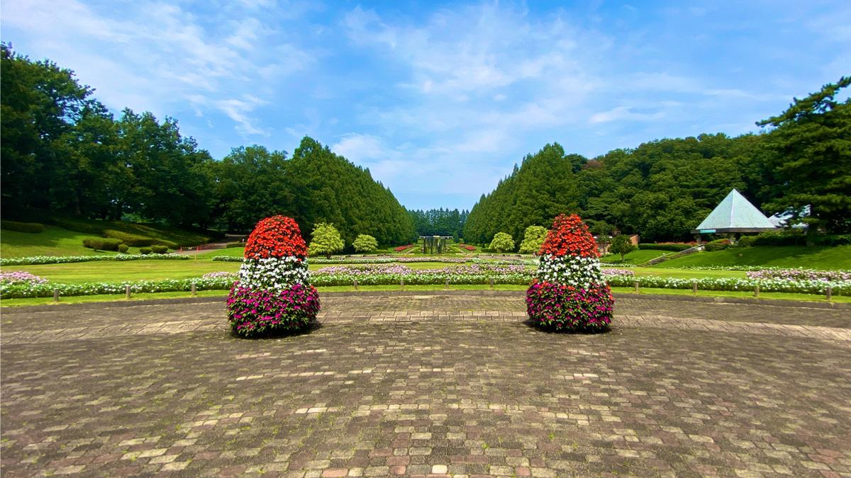 f:id:JAPAN-OUTDOOR-HOOPS:20200820083349j:plain