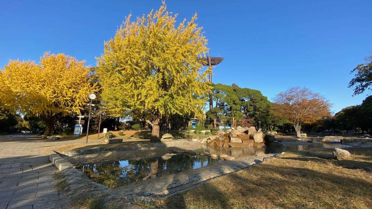 f:id:JAPAN-OUTDOOR-HOOPS:20201124091211j:plain