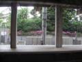 [横浜][鉄道][植物]ホームの向こう