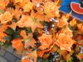 [中区][花]造花