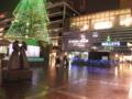 [西区][横浜駅]雨のツリー