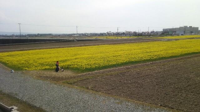 f:id:JINMU-YUURI:20170429115552j:image