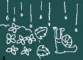 紫陽花 梅雨 カタツムリ
