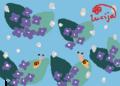 6月 梅雨 紫陽花 カタツムリ