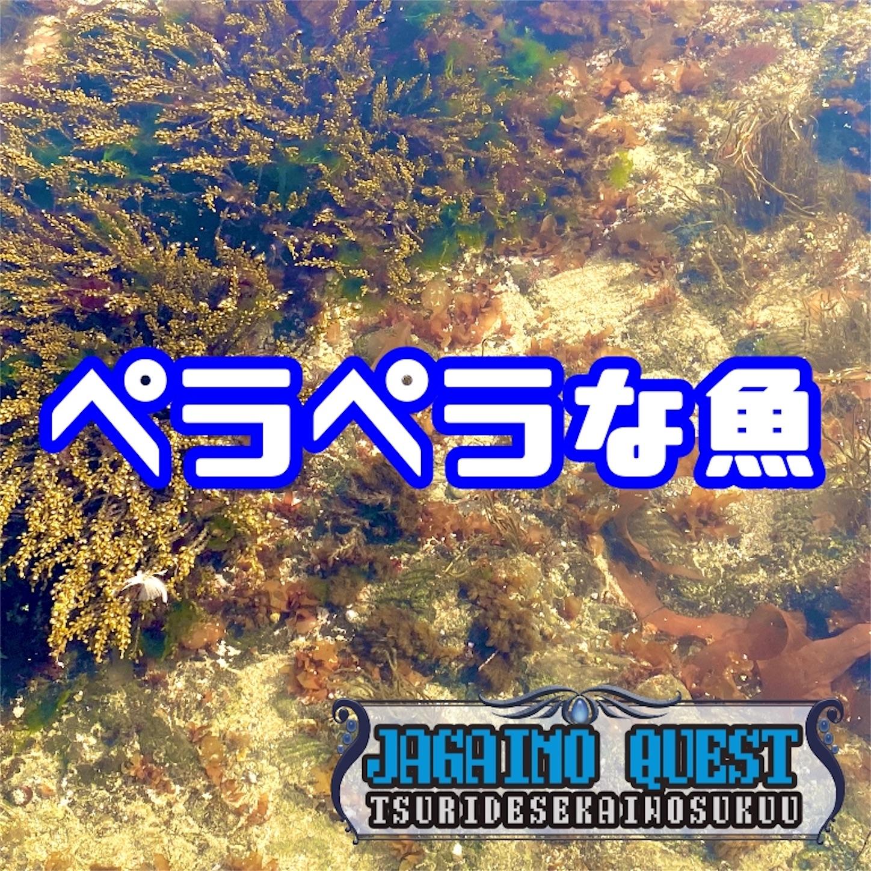 f:id:Jagaimoboys:20200309211222j:image