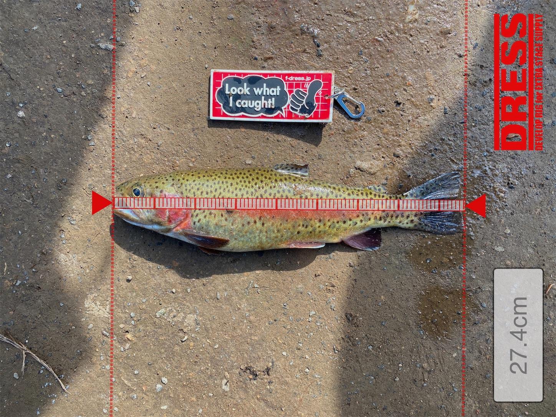 f:id:Jagaimoboys:20201010150613j:image