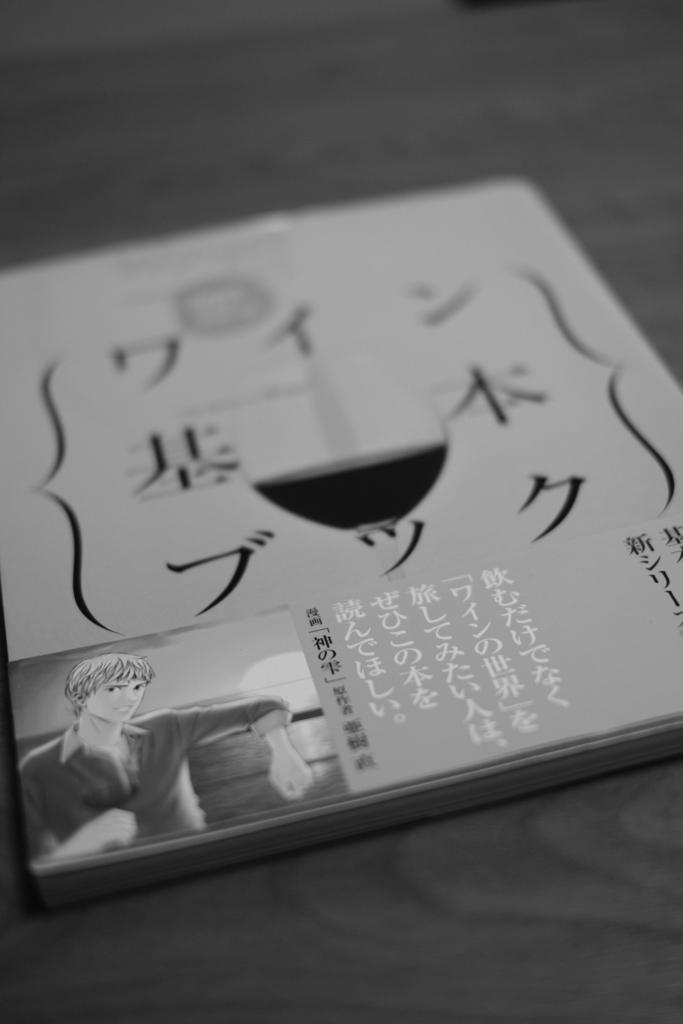 f:id:JapanCoachSakai:20161224130509j:plain