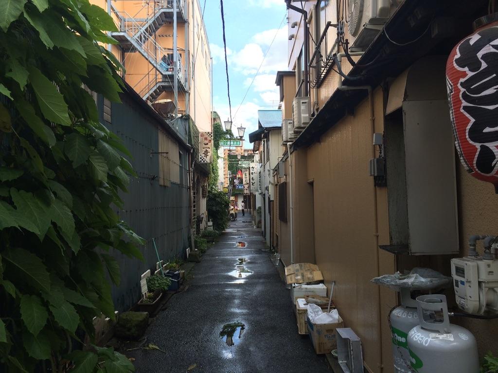 f:id:JapaneseSanpo:20150801011131j:image