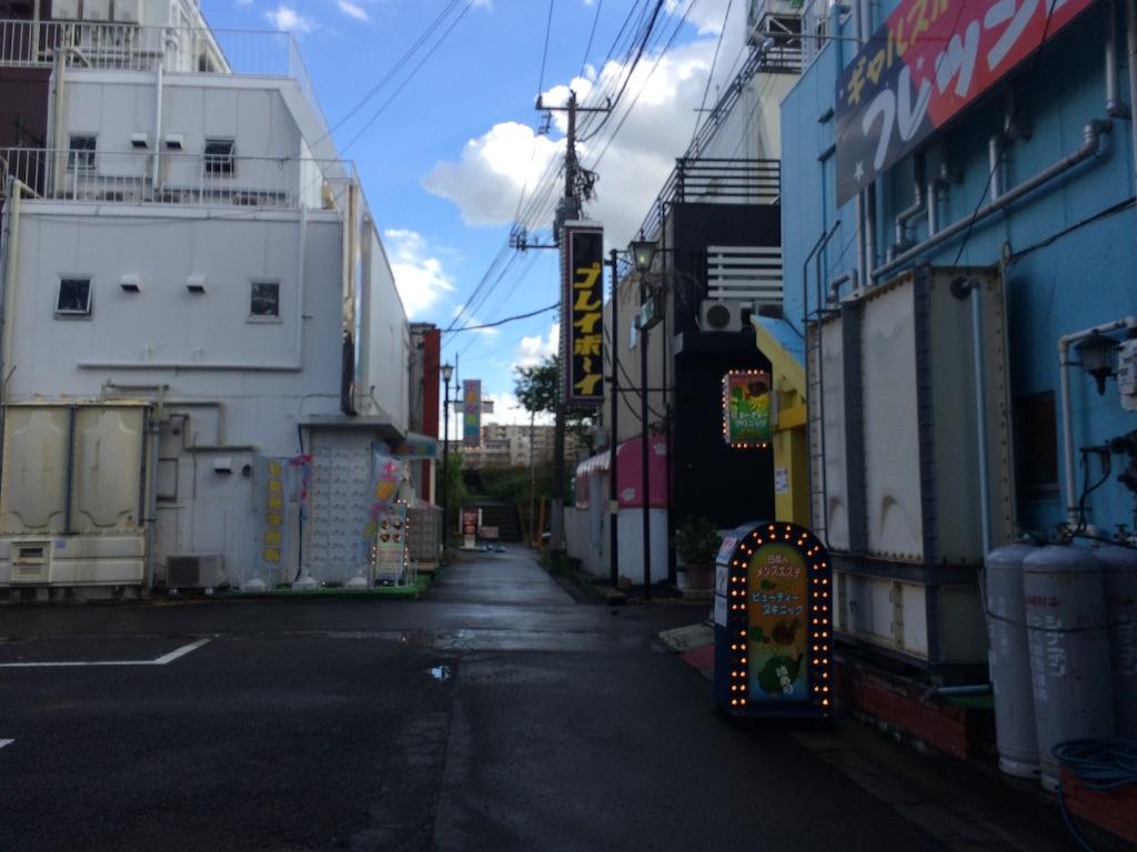 f:id:JapaneseSanpo:20150801011511j:image