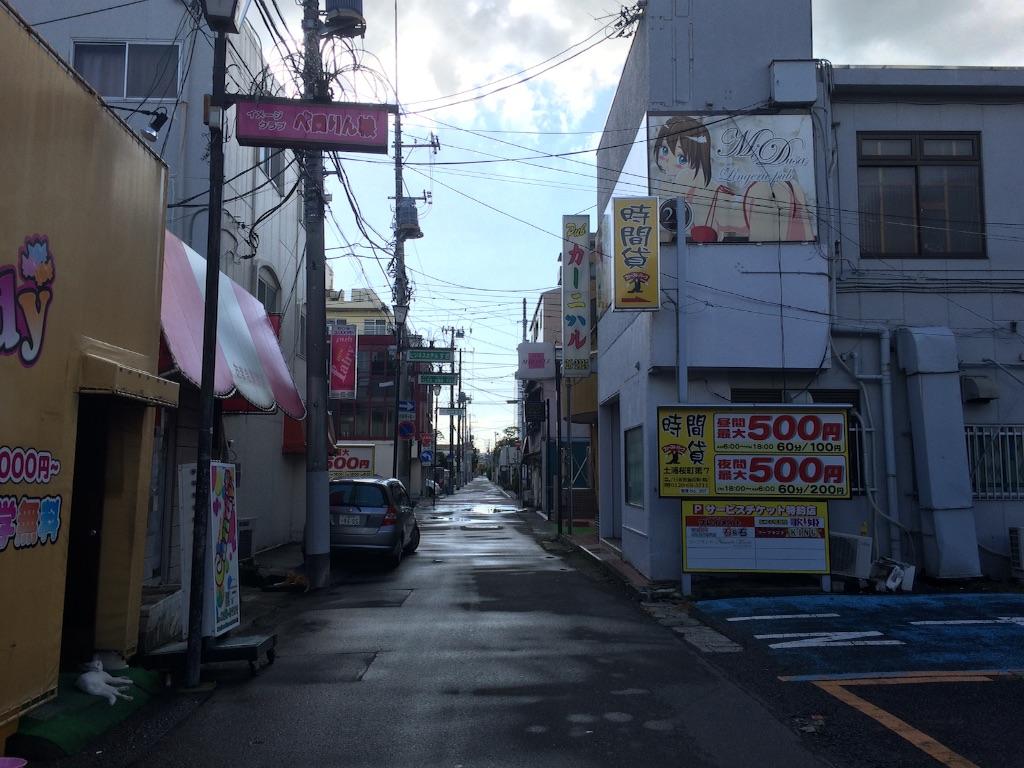 f:id:JapaneseSanpo:20150801011640j:image