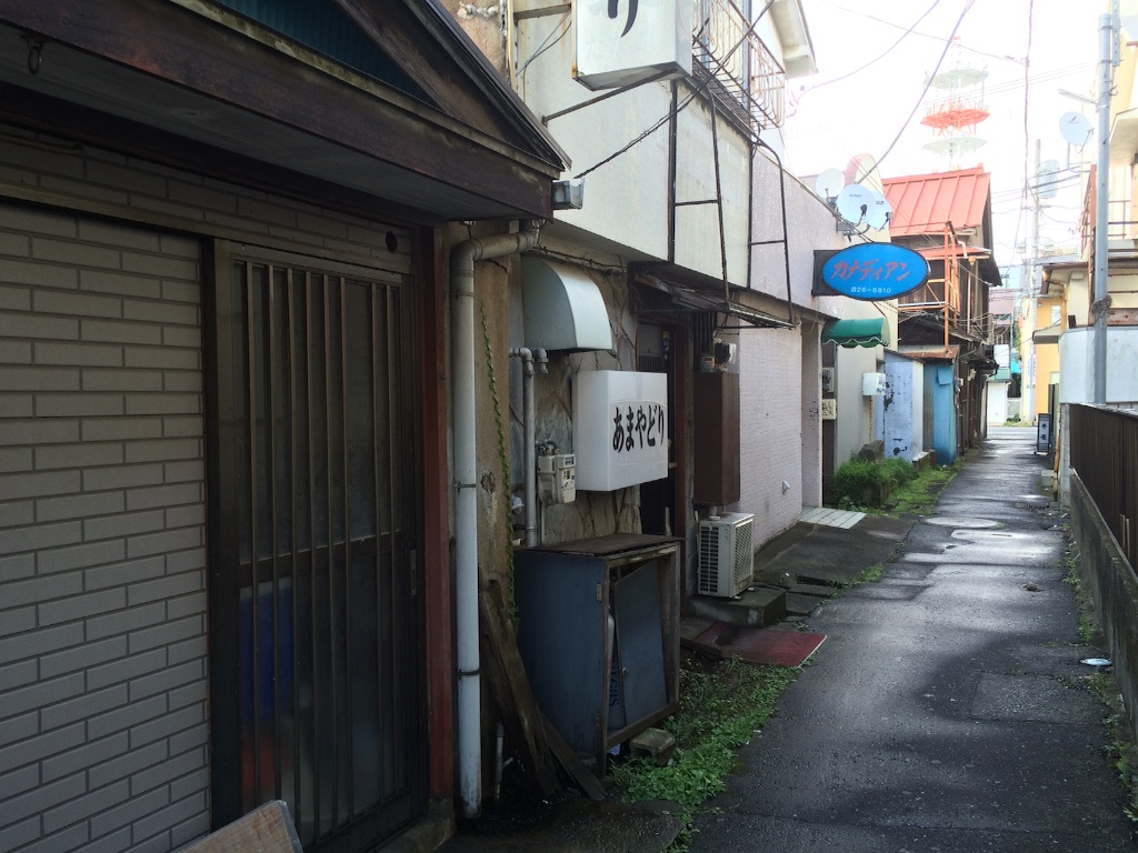 f:id:JapaneseSanpo:20150801011654j:image