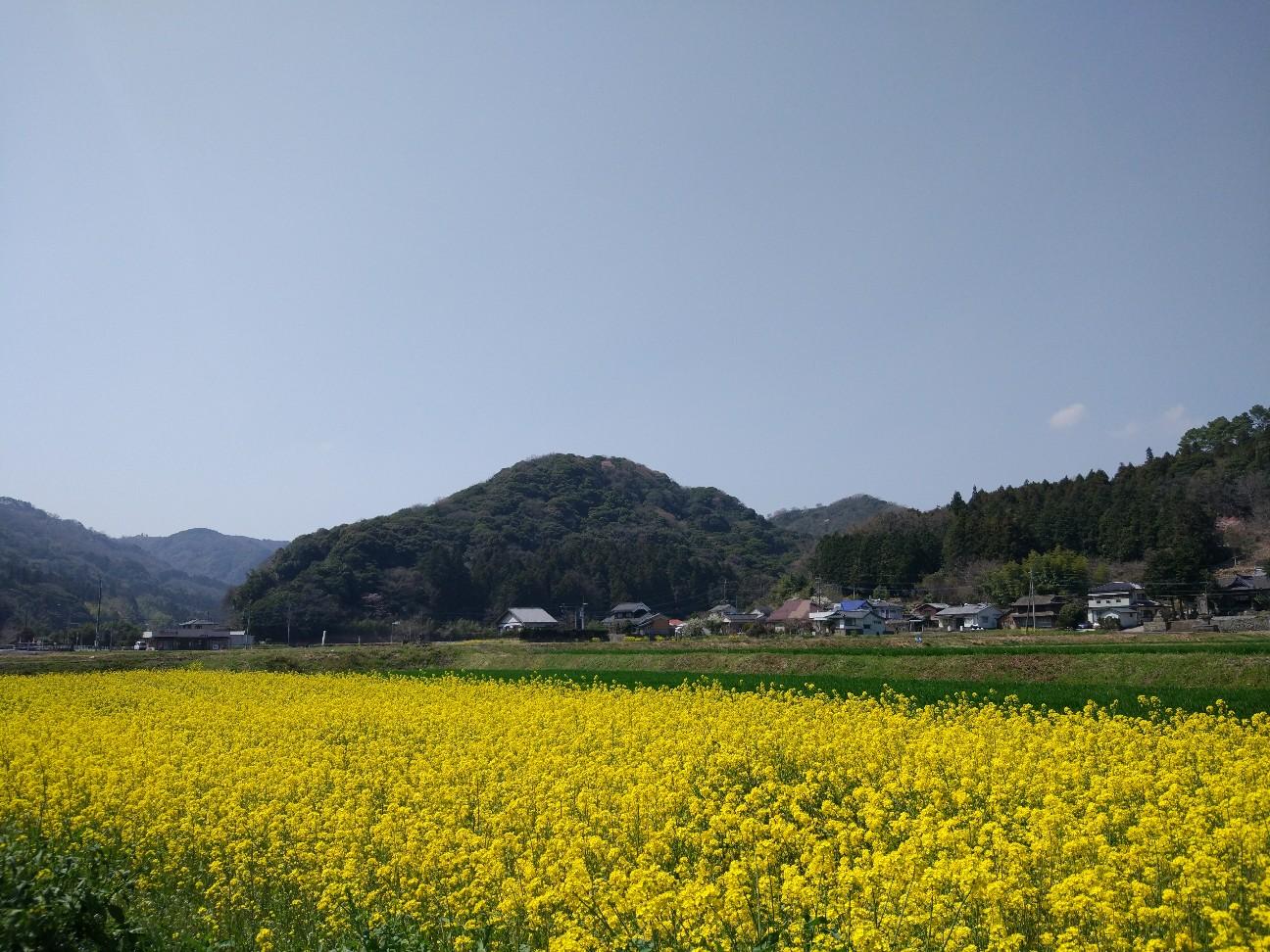 f:id:Jinseiyoyoyo:20180328233132j:image