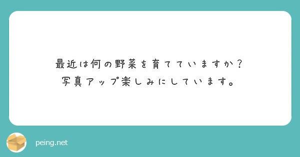 f:id:Jinseiyoyoyo:20191119175459j:plain