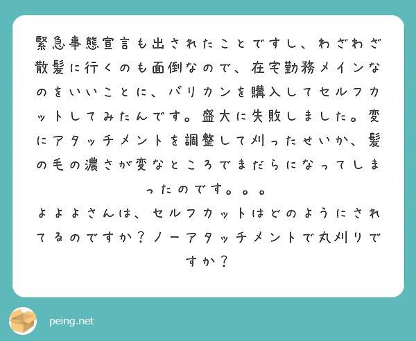 f:id:Jinseiyoyoyo:20210124180902j:image