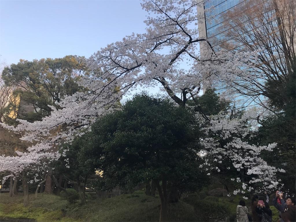f:id:Jiyu-na-neko:20180326183451j:image
