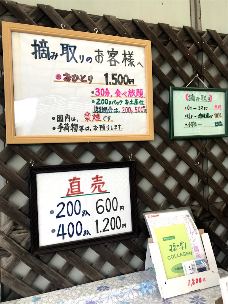 f:id:Jiyu-na-neko:20180720103608j:image