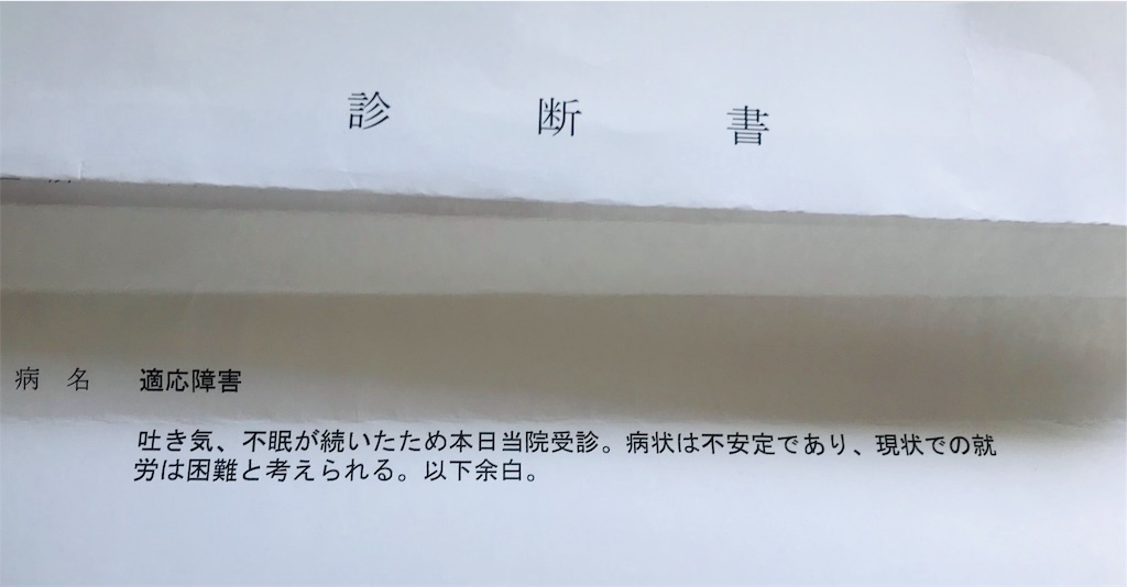 f:id:Jiyu-na-neko:20190225142926j:image