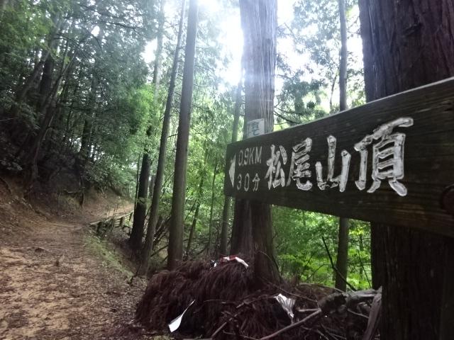 f:id:Jodel-nozomi:20161231230224j:plain