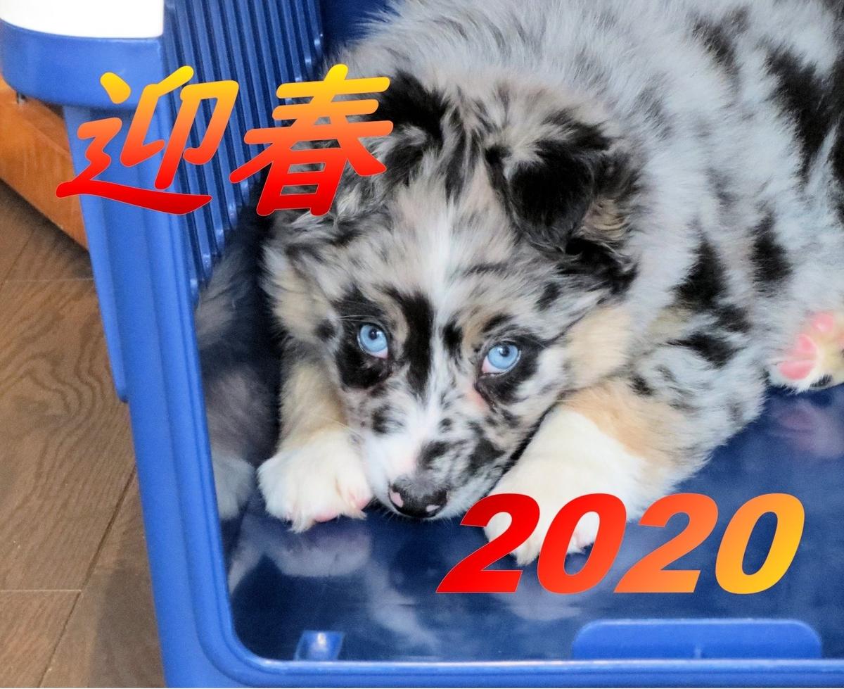 f:id:Joe-009:20200101103303j:plain