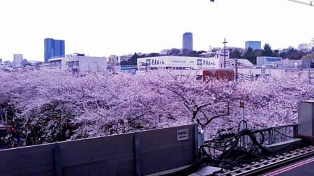f:id:John_Kawanishi:20130416005620j:image