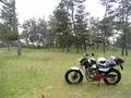 [バイク][キャンプ]大島キャンプ場